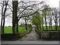SE0339 : Track off Slaymaker Lane by Christine Johnstone
