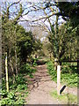 TM3977 : Footpath to New Reach & River Lane by Adrian Cable