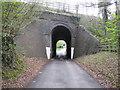 SU9690 : Beaconsfield Golf Club railway bridge by Nigel Cox
