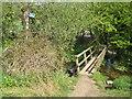 SU9991 : Chalfont St Peter: Footbridge over the River Misbourne by Nigel Cox