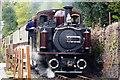 SH6139 : Merddin Emrys Arrives at Penrhyn Station, Gwynedd by Peter Trimming