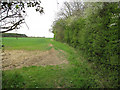 TL6456 : Footpath around Basefield Wood by Hugh Venables