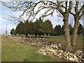 ST7268 : Wall, Bath racecourse by Derek Harper