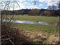 ST6966 : Pond by the Avon by Derek Harper