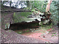 SJ8677 : Sandstone cave in Clock House Wood by Stephen Craven