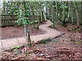 SJ8677 : New footpath in the woods by Stephen Craven
