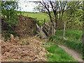 SD7510 : Wooden Bridge by David Dixon