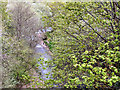 SD7309 : Bradshaw Brook by David Dixon