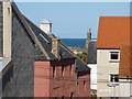NT6879 : Dunbar Townscape : Up on the Roof : Week 19