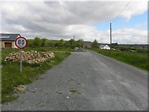 H2318 : Road at Clontycarnaghan by Kenneth  Allen