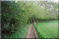 TQ1928 : Footpath to Manning's Heath by N Chadwick