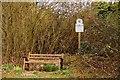 SU6993 : Bench on Watlington Hill by Steve Daniels
