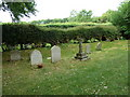 SU8307 : Churchyard- St Mary, Sennicotts (4) by Basher Eyre