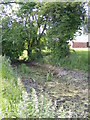 TM3370 : Moat at Moat Farm by Adrian Cable