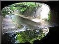 SP0684 : Picturesque, River Rea by Michael Westley