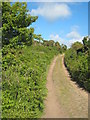 SW4332 : Bridleway between Boswarva and Madron by Rod Allday