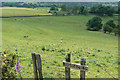 SJ9569 : No sledging by Alan Murray-Rust
