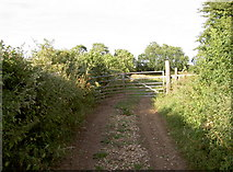 ST5767 : At the end of the track, there's a gate by Neil Owen