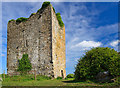 N1322 : Castles of Leinster: Coole, Offaly by Mike Searle