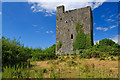 M4307 : Castles of Connacht: Lydacan, Galway by Mike Searle