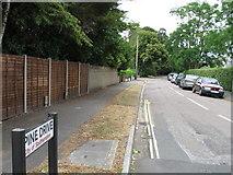 SU4613 : Pine Drive, Southampton by Alex McGregor