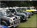 TQ9141 : Mini's at Darling Buds Classic Car Show : Week 28