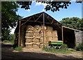 SW8760 : Barn, Bosoughan by Derek Harper