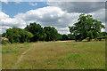 TQ1331 : Footpath towards Broadbridge Heath by Robin Webster