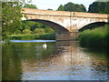 A peaceful summer evening scene on the Whiteadder at Allanton bridge