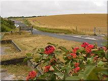 TQ2708 : Devil's Dyke Road by Colin Smith
