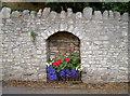 ST6965 : Floral alcove by Neil Owen
