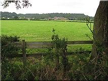 SJ5266 : Fields off Common Lane by Richard Webb