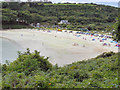 SW7929 : Maenporth Bay and Beach From Cliff Path by David Dixon