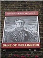 TQ2878 : Duke of Wellington, London Pub Sign by David Anstiss