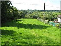 R6363 : Pasture near Cloonlara by David Hawgood