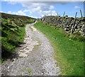SE0136 : Track below Enshaw Knoll by Chris Heaton
