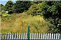 J4087 : Former harbour railway, Carrickfergus (2) by Albert Bridge