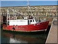 NT6879 : Euphemia at Victoria Harbour, Dunbar : Week 36