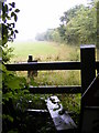 TM4165 : Footpath stile on the footpath to Honeypot Lane by Adrian Cable