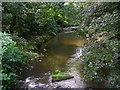 SE0319 : River Ryburn southwest of Ripponden by John Darch