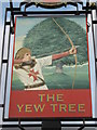TQ7558 : The Yew Tree, Pub Sign, Maidstone by David Anstiss
