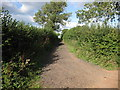 ST6256 : Green Lane by James Ayres