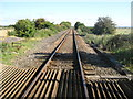 TQ9626 : Marshlink Line towards Appledore by David Anstiss