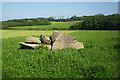 SW6437 : Carwynnen Quoit by Michael Murray