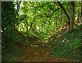 SP9505 : Earthworks at Hawridge Court by Tom Presland
