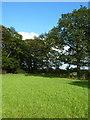 SJ8170 : Footpath and stile near Woodcroft by Richard Law