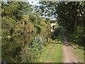TQ0280 : Grand Union Canal Slough Arm by Derek Harper