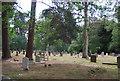 TQ0844 : Graveyard, St Mark's Church, Peaslake by N Chadwick