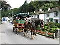 SX2051 : Polperro Horse Bus by Derek Voller