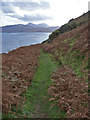 NG5937 : Path from Hallaig to North Fearns by Richard Dorrell